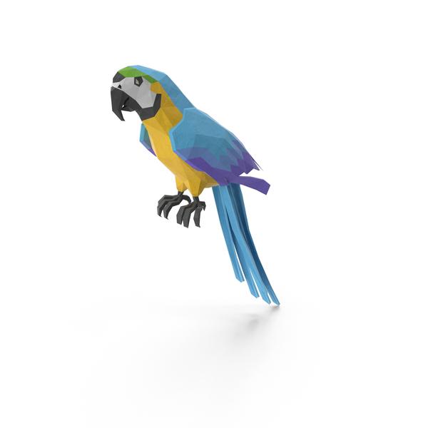 Low Poly Parrot PNG Images & PSDs for Download | PixelSquid