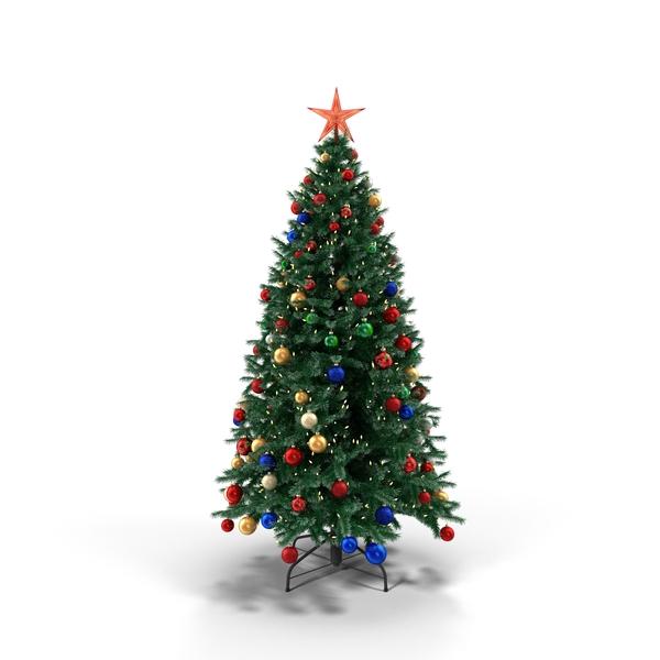 Douglas Fir Tree Object