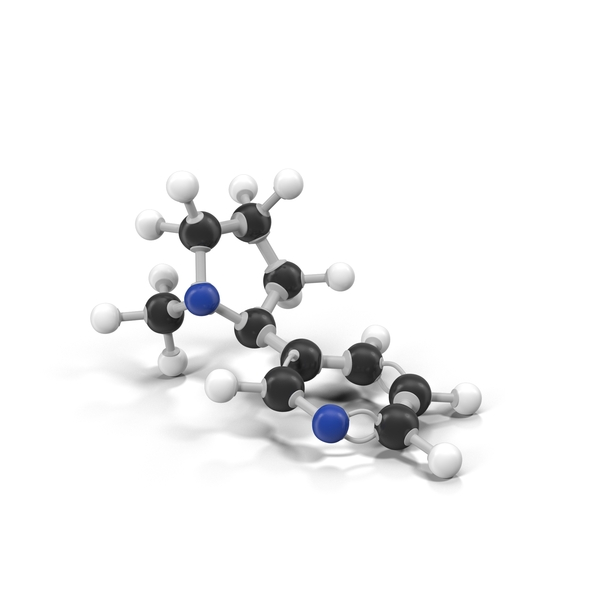 Nicotine Molecule Object
