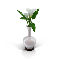 Calla Lilies in Vase PNG & PSD Images