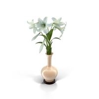 Easter Lilies in Vase PNG & PSD Images