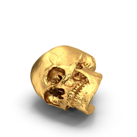 Gold Skull PNG & PSD Images