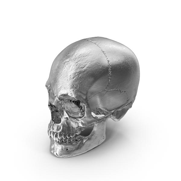 Chrome Skull PNG & PSD Images