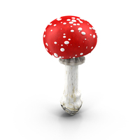 Red Mushroom With White Spots PNG & PSD Images