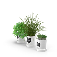 Herbs in Pots PNG & PSD Images
