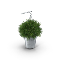 Small Hanging Plant PNG & PSD Images