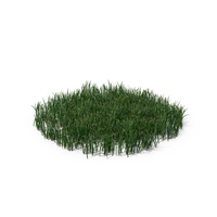 Simple Grass (Large) PNG & PSD Images