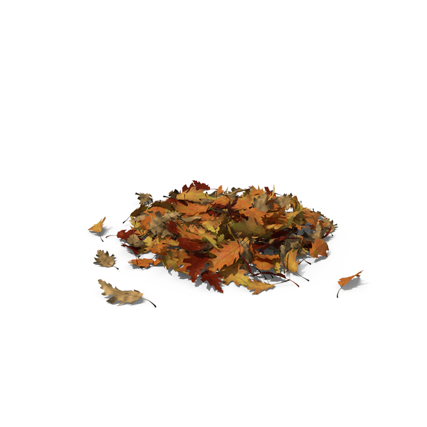 Large Pile of Oak Leaves Object
