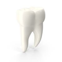 Molar Tooth PNG & PSD Images
