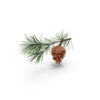 Pine Tree Sprig Object