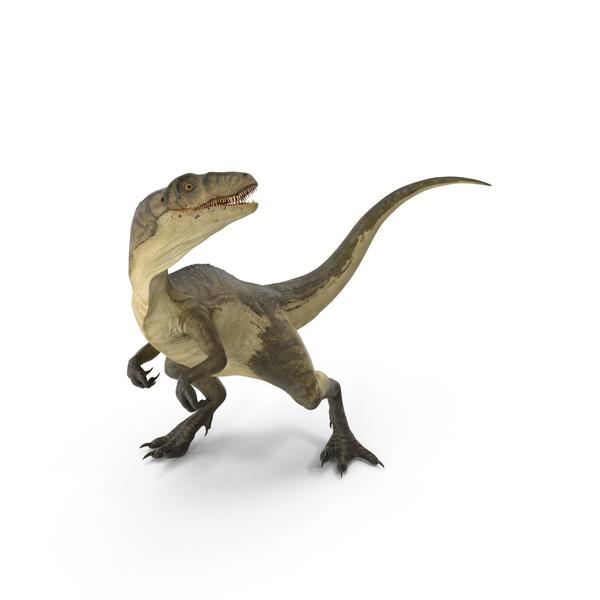 Deinonychus Object