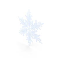 Snowflake  Object