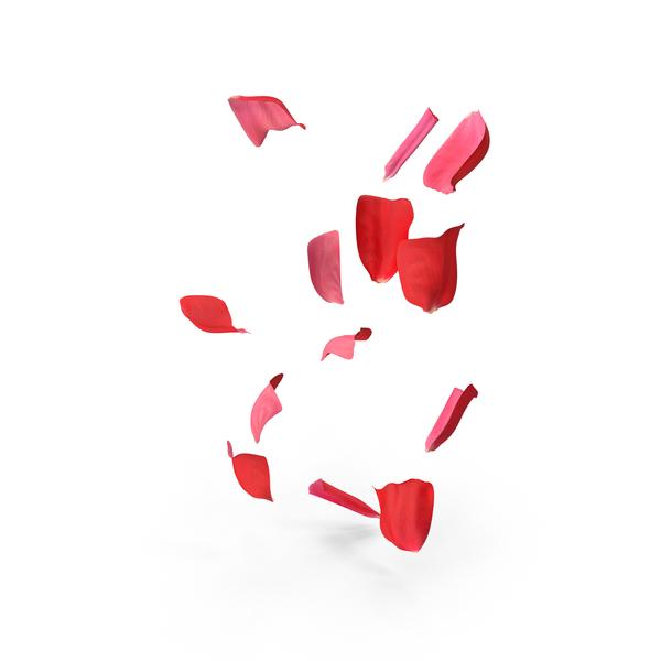 Rose Petals Object