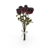 Bouquet of Dried Roses PNG & PSD Images