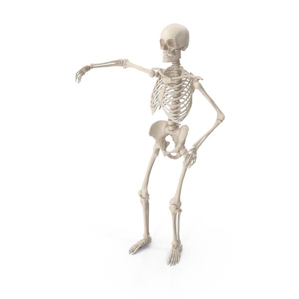 Skeleton Arm Around Shoulder PNG & PSD Images