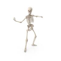 Skeleton Bring It PNG & PSD Images