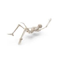 Skeleton Falling PNG & PSD Images