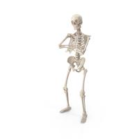 Skeleton B-Boy PNG & PSD Images