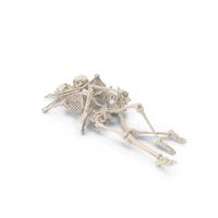 Skeleton John and Yoko PNG & PSD Images