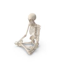Skeleton Lotus Pose PNG & PSD Images