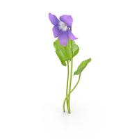 Violet PNG & PSD Images