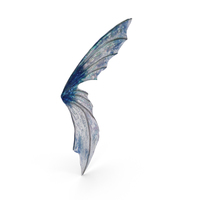 Fairy Wing PNG & PSD Images