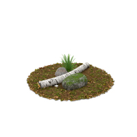 Log Fern and Rock PNG & PSD Images