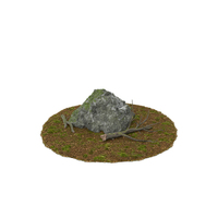 Boulder with Tree Branches PNG & PSD Images