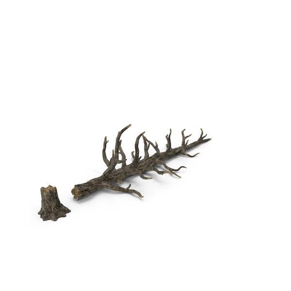 Fallen Tree Object