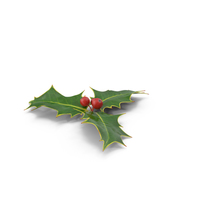 Holly PNG & PSD Images