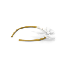 Bow Headband PNG & PSD Images