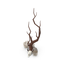 Bare Tree with Cow Skull PNG & PSD Images