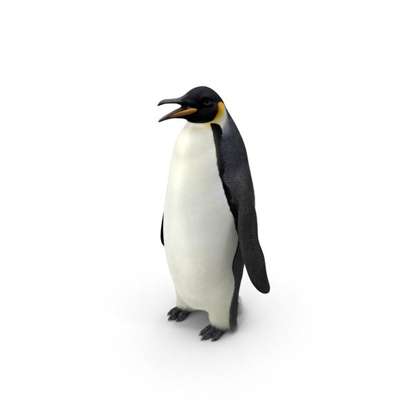 Emperor Penguin Object