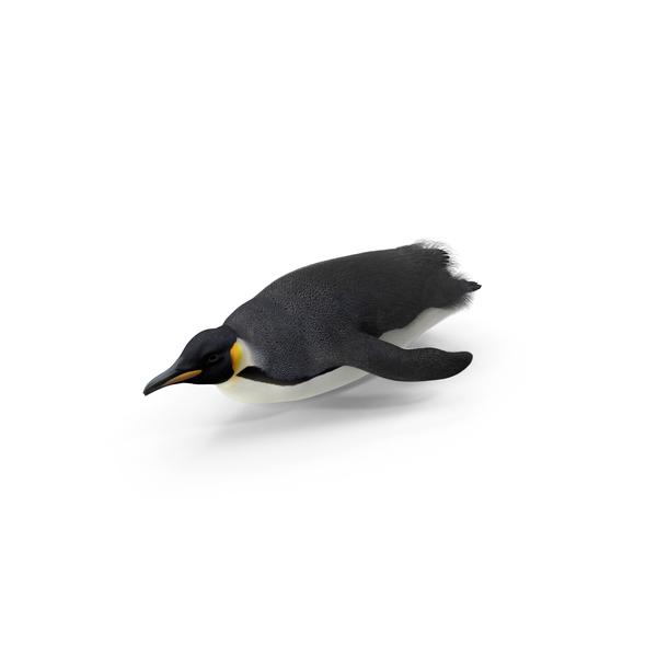 Emperor Penguin Sliding Object