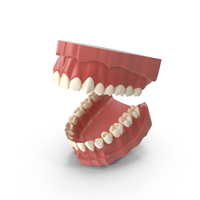 Teeth PNG & PSD Images