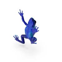 Poison Dart Frog PNG & PSD Images