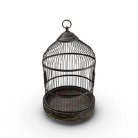 Old Bird Cage PNG & PSD Images