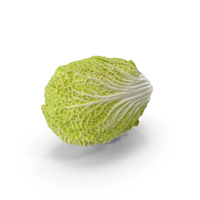 Napa Cabbage PNG & PSD Images