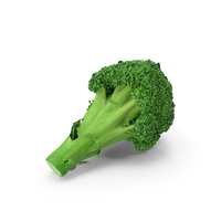 Broccoli PNG & PSD Images