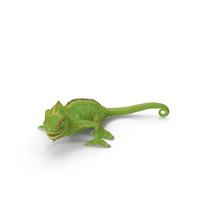 Chameleon Walking PNG & PSD Images