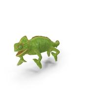 Chameleon Walking on Branch Pose PNG & PSD Images