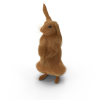 Rabbit Standing PNG & PSD Images