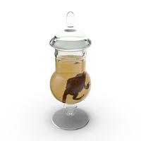 Frog Specimen Jar PNG & PSD Images