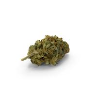 Marijuana Bud PNG & PSD Images