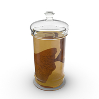 Lung Specimen in Jar PNG & PSD Images