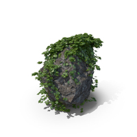 Ivy Covered Rock PNG & PSD Images