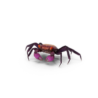 Purple Vampire Crab PNG & PSD Images