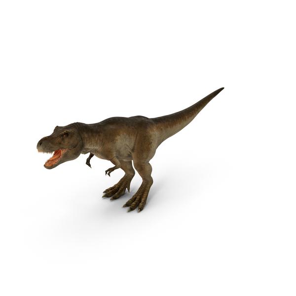 Tyrannosaurus Rex PNG & PSD Images
