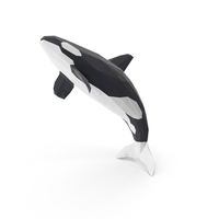 Orca Whale PNG & PSD Images