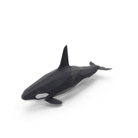 Low Poly Orca Whale PNG & PSD Images